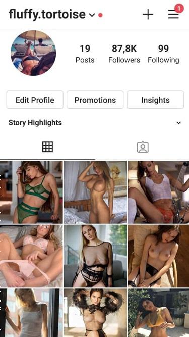 🇺🇸 88k Models Account 1