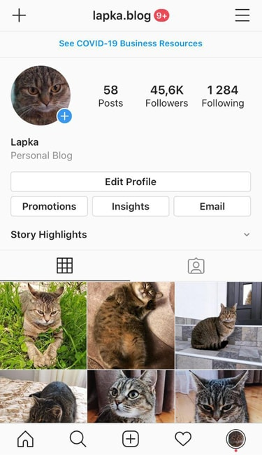cat ig account for sale